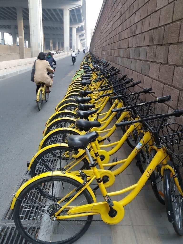 Explore the city on a Ofo bike.