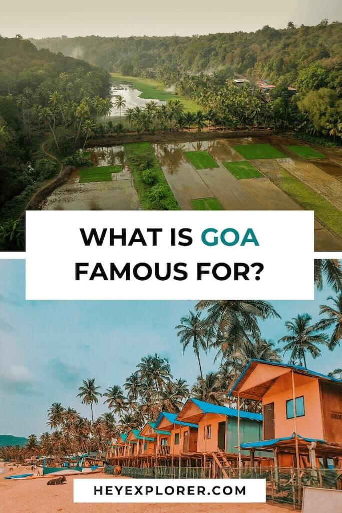 goa is famous for what