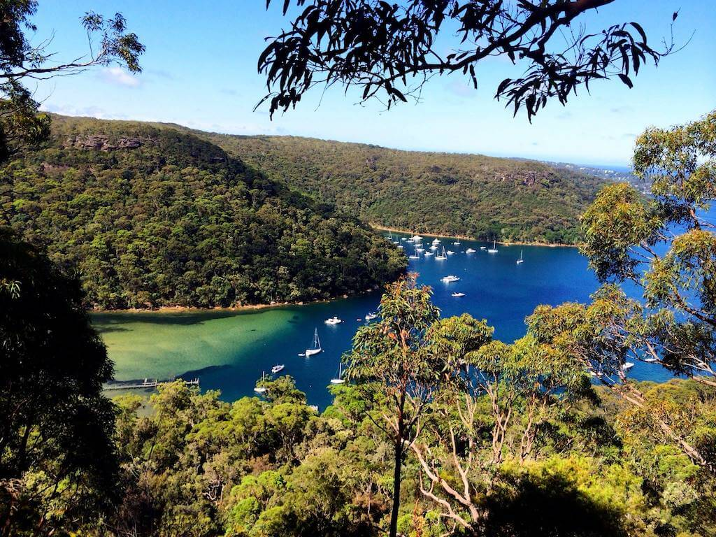 View of the blue waters at Ku Ring Gai Chase National Park