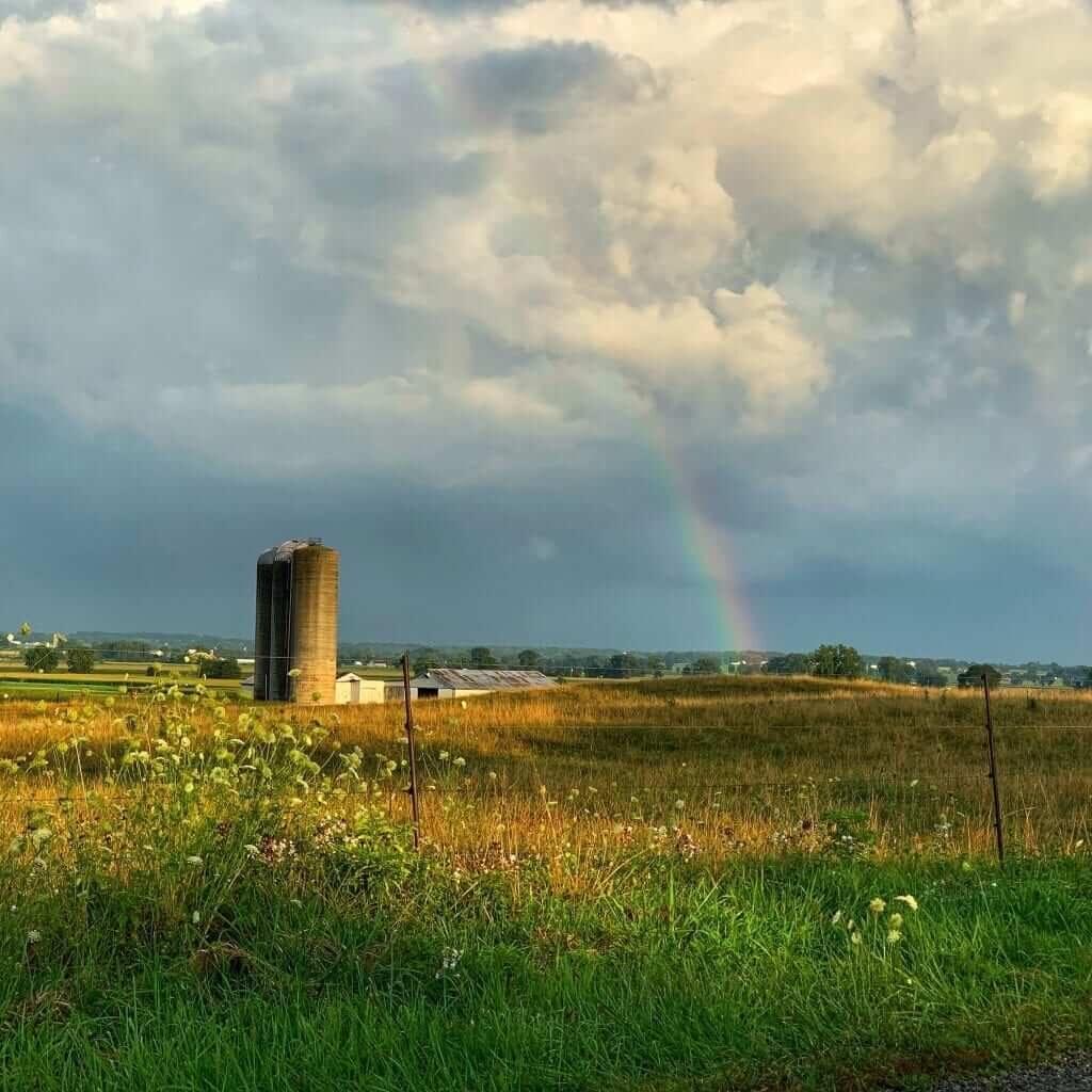 farmland rainbow