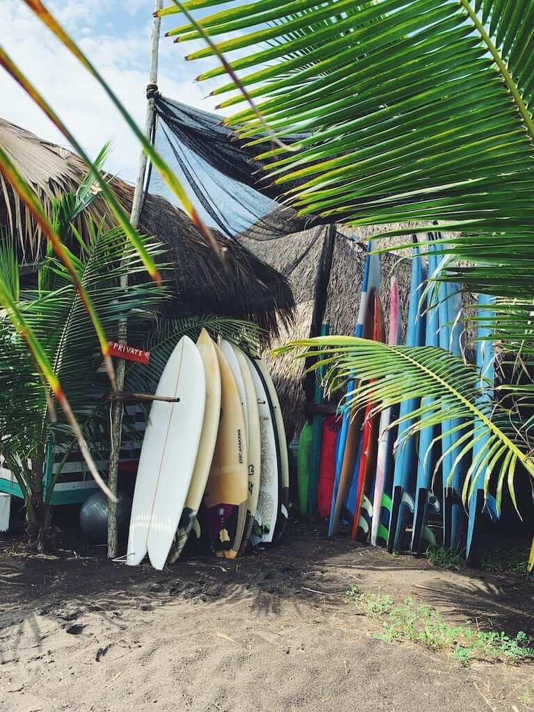 surfboard shop