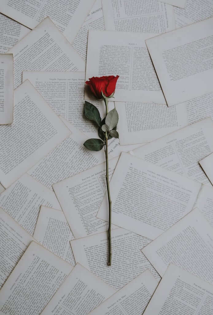 roses on pages