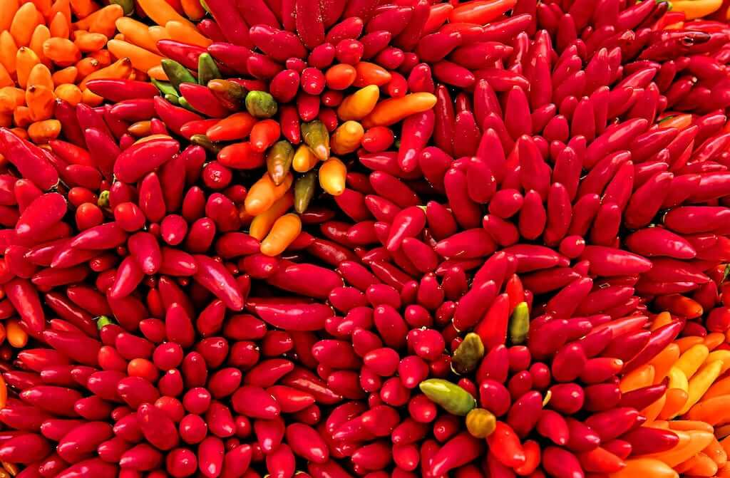 Ají chili peppers