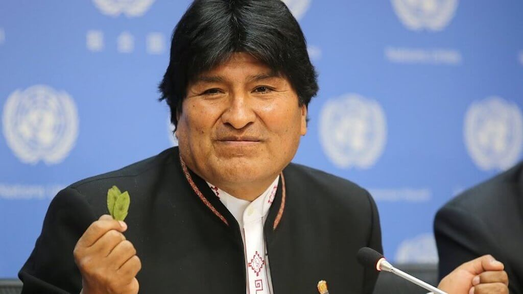 Man holding Bolivian coca leaves