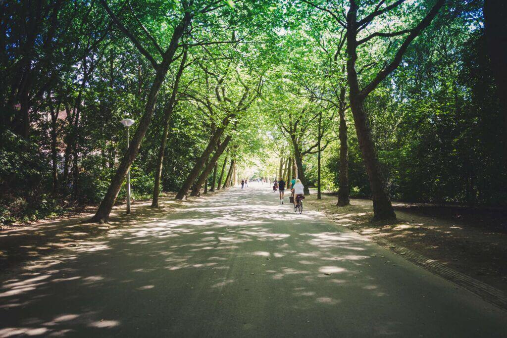 Amsterdam's well-known park, vondelpark