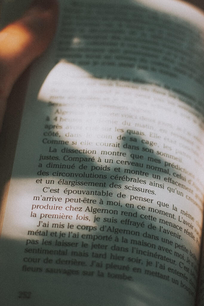 pages of a book in French